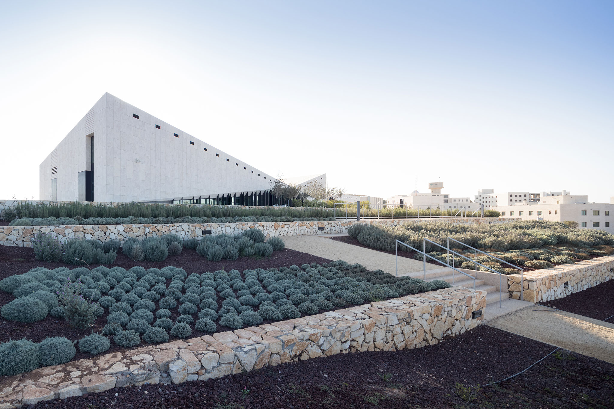 folds in the hill  the palestinian museum by heneghan peng architects