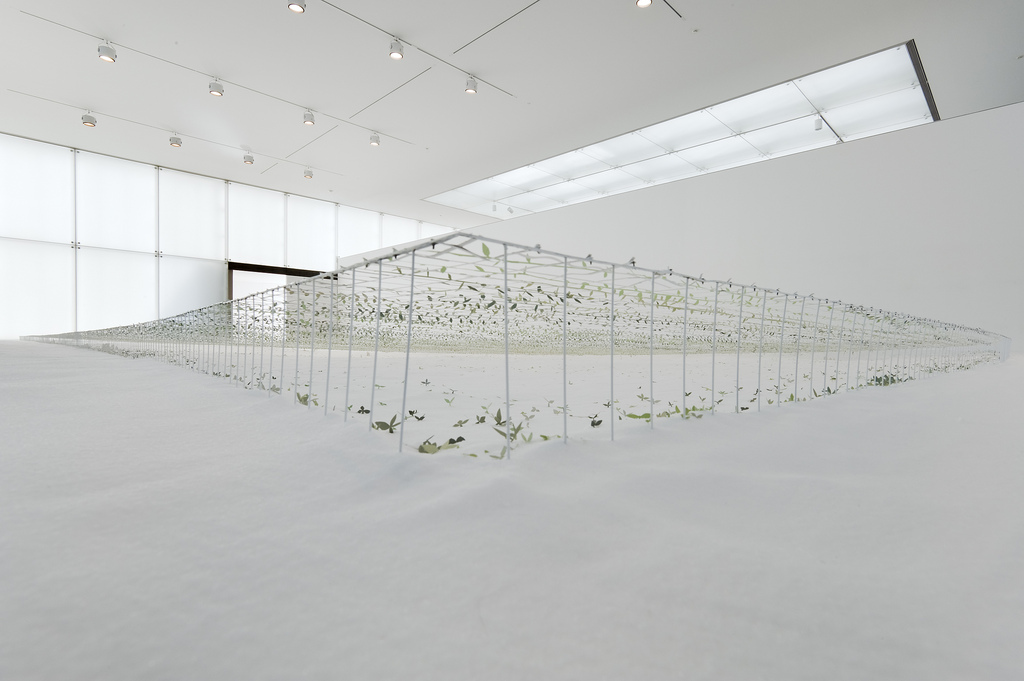 Junya ishigami another scale of architecture horizon toyota municipal museum of art