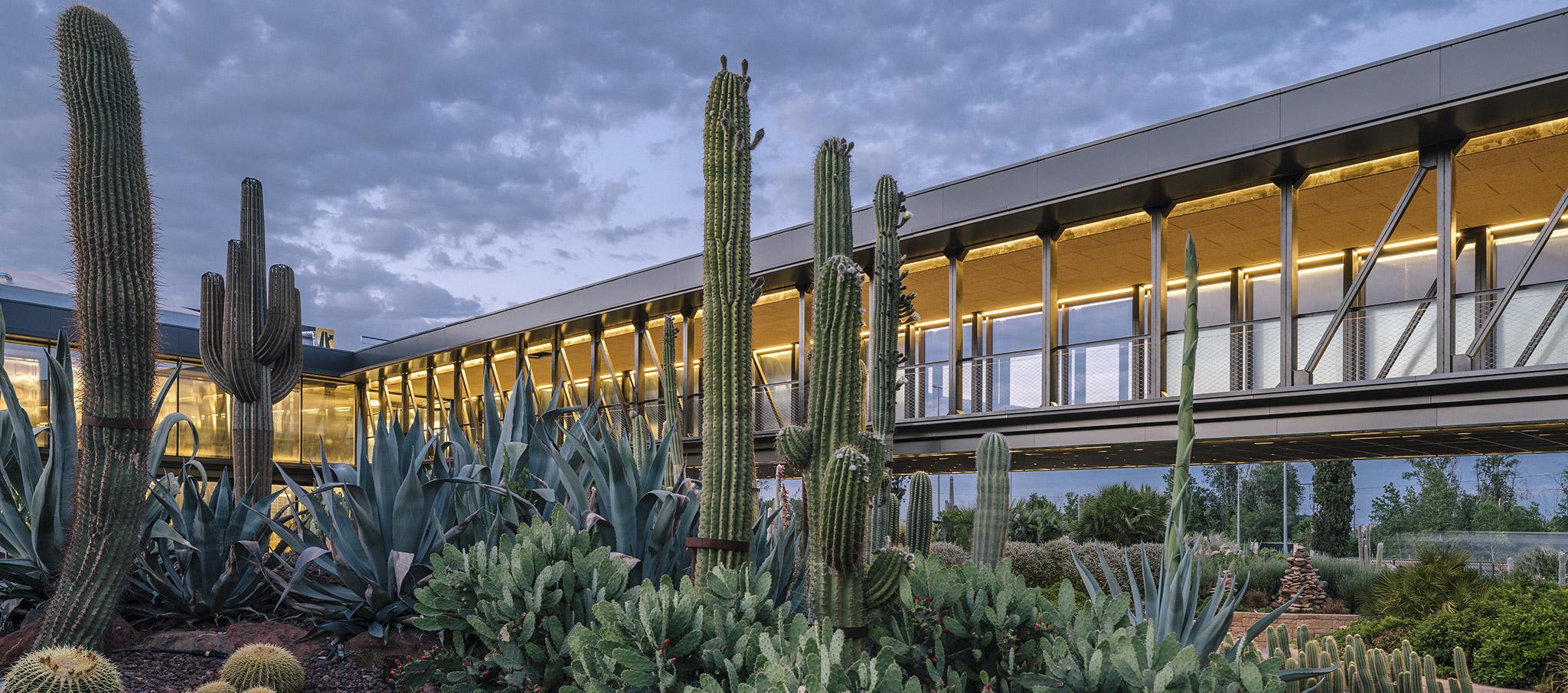 Desert City by GarciaGerman Arquitectos. Photograph © Imagen Subliminal (Miguel de Guzmán + Rocío Romero)
