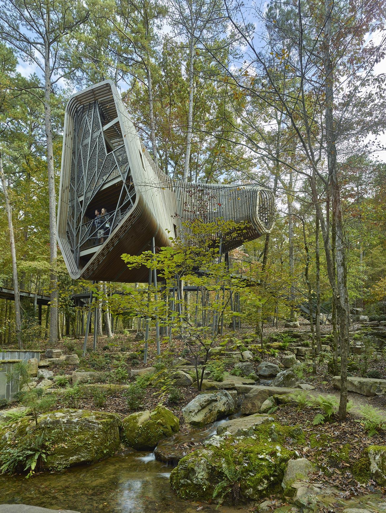 La Casa del Árbol Evans en el Bosque de los Jardines de Garvan por modus studio y la Universidad de Arkansas. Fotografía por Timothy Hursley