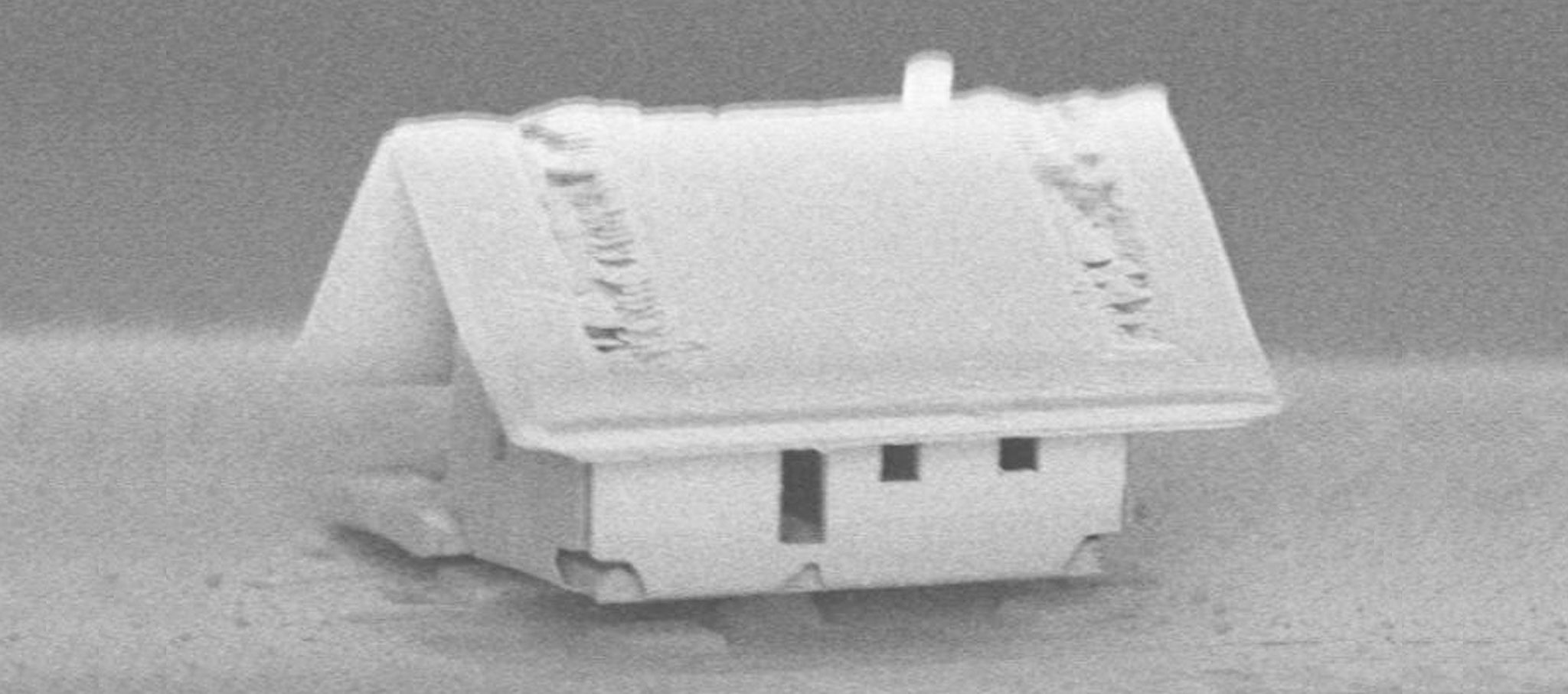 "A house for bacteria? It is so small that ""even a mite doesn't fit through the door"". Image courtesy of Femto-ST Institute"