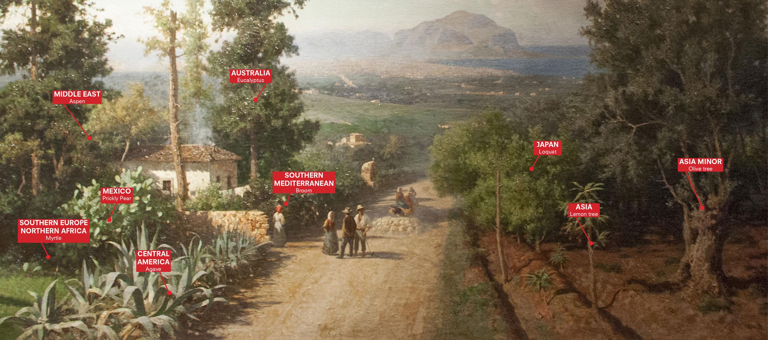 Concept for Manifesta 12 Palermo: \