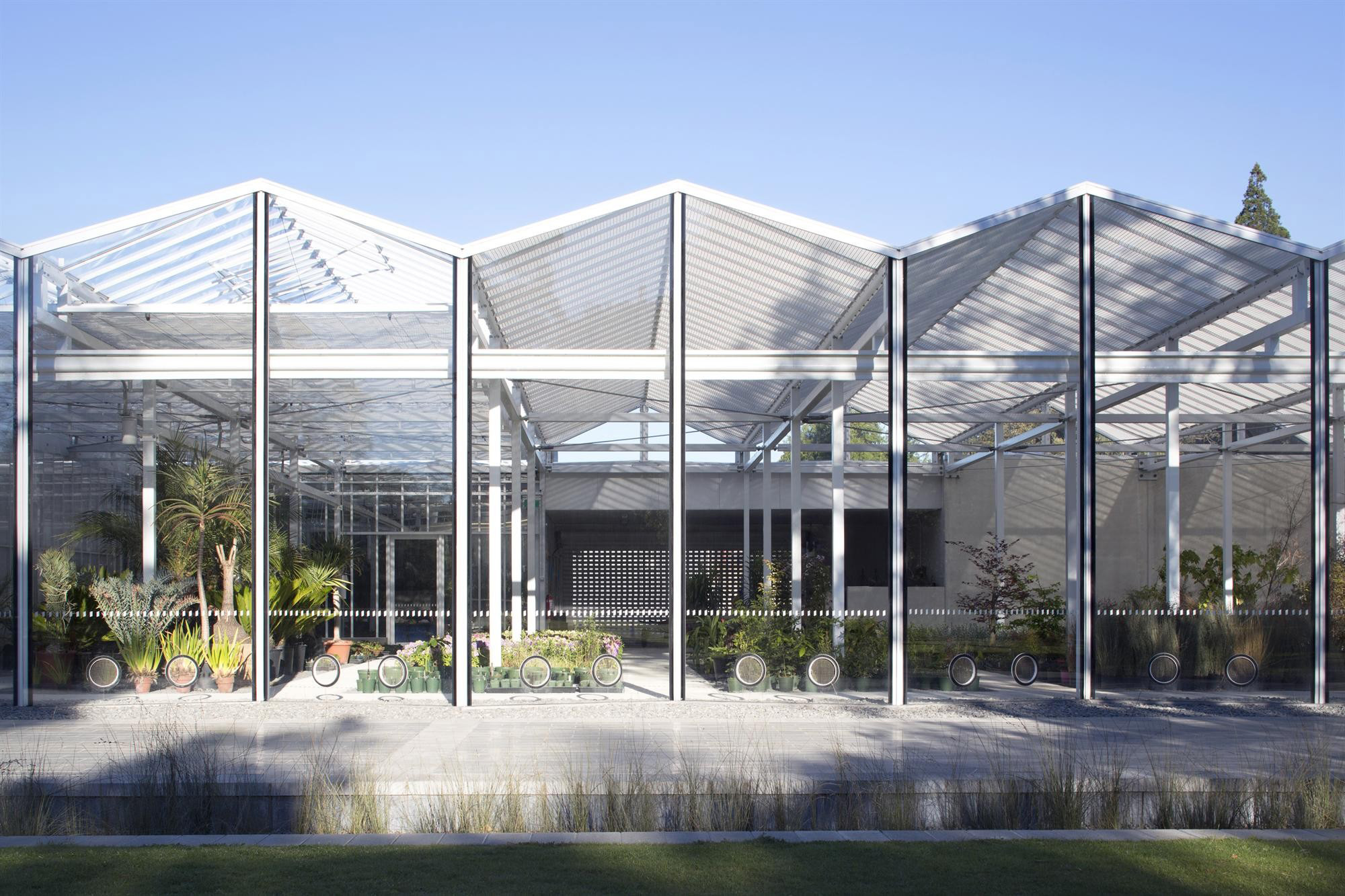 Christchurch botanic gardens visitor 39 s centre by patterson for Architects christchurch