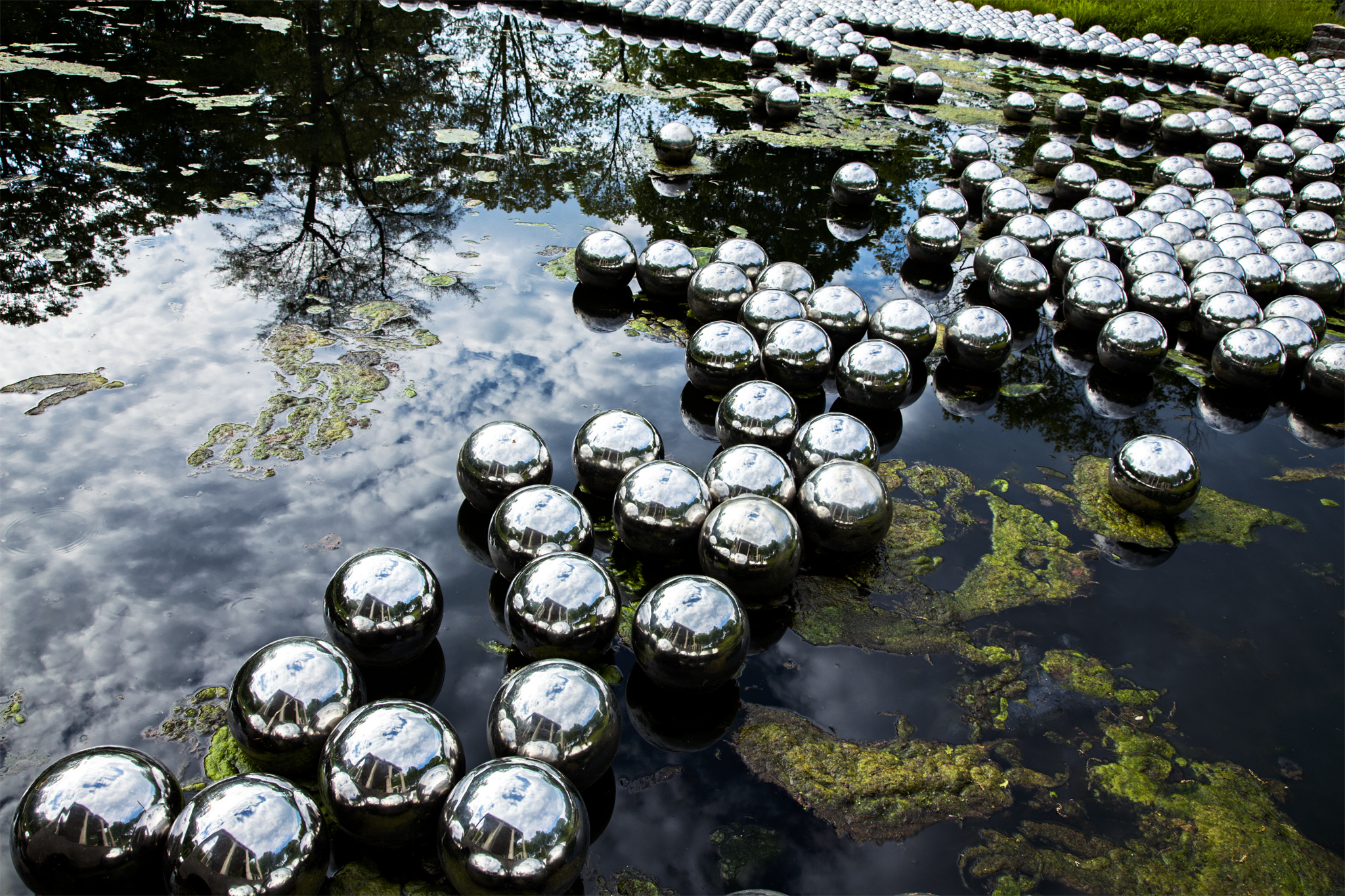 Image result for Jardin des jonquilles yayoi kusama