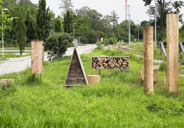 Insect City by Iván Juárez. Phtograph by Gregor Graf