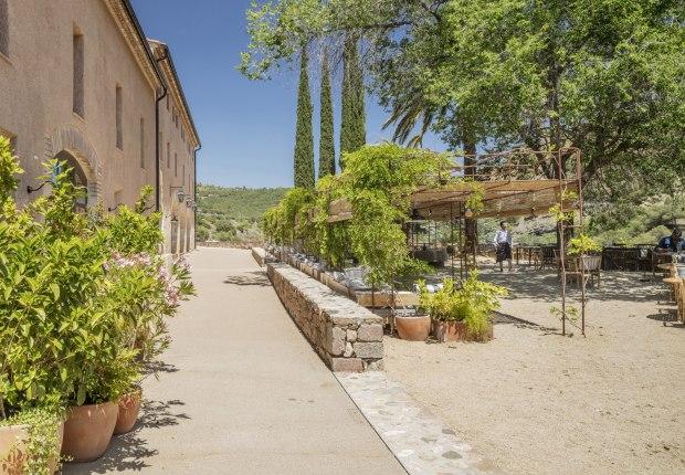 Proyecto de paisajismo Terra Dominicata Hotel & Winery por SCOB. Fotografía por Adrià Goula