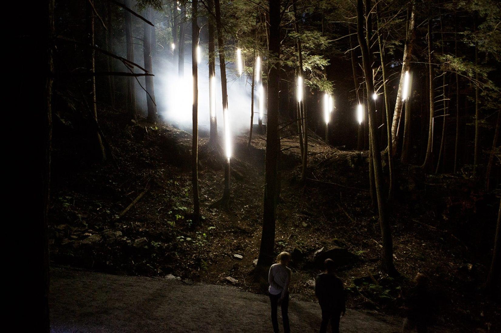 Foresta Lumina por Moment Factory. Imagen cortesía de Moment Factory.