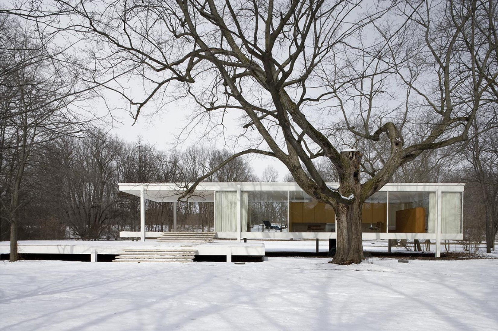 Casa Farnsworth por Mies van der Rohe, 8 de marzo de 2006. Fotografía © Carol M. Highsmith.
