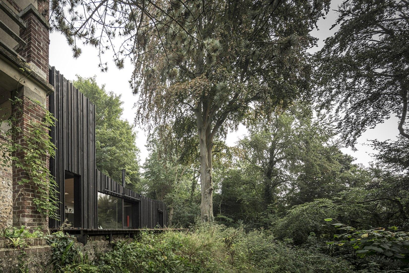 Black Wood House by Marchi Architectes. Photography © Fernando Guerra FG + SG. Courtesy of Marchi Architectes