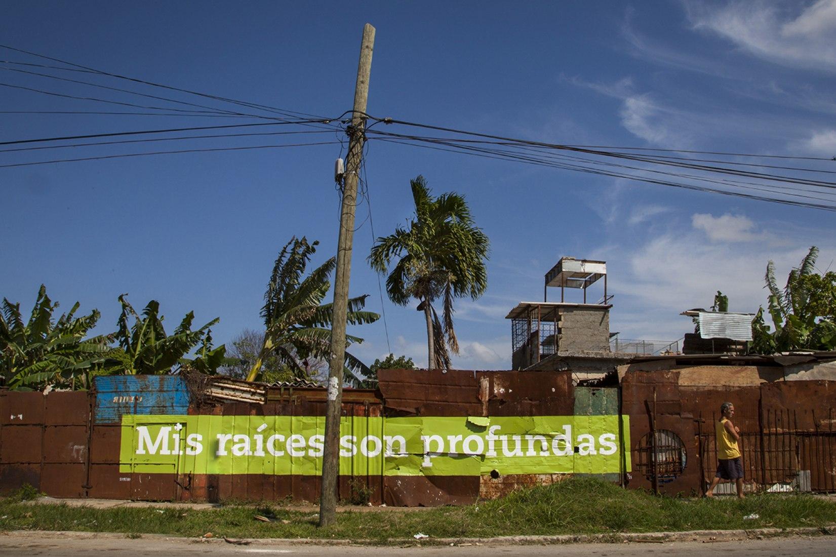 Mis raíces son profundas. MI RAÍZ ES. Boa Mistura en la Bienal de La Habana. Fotografía © Boa Mistura.