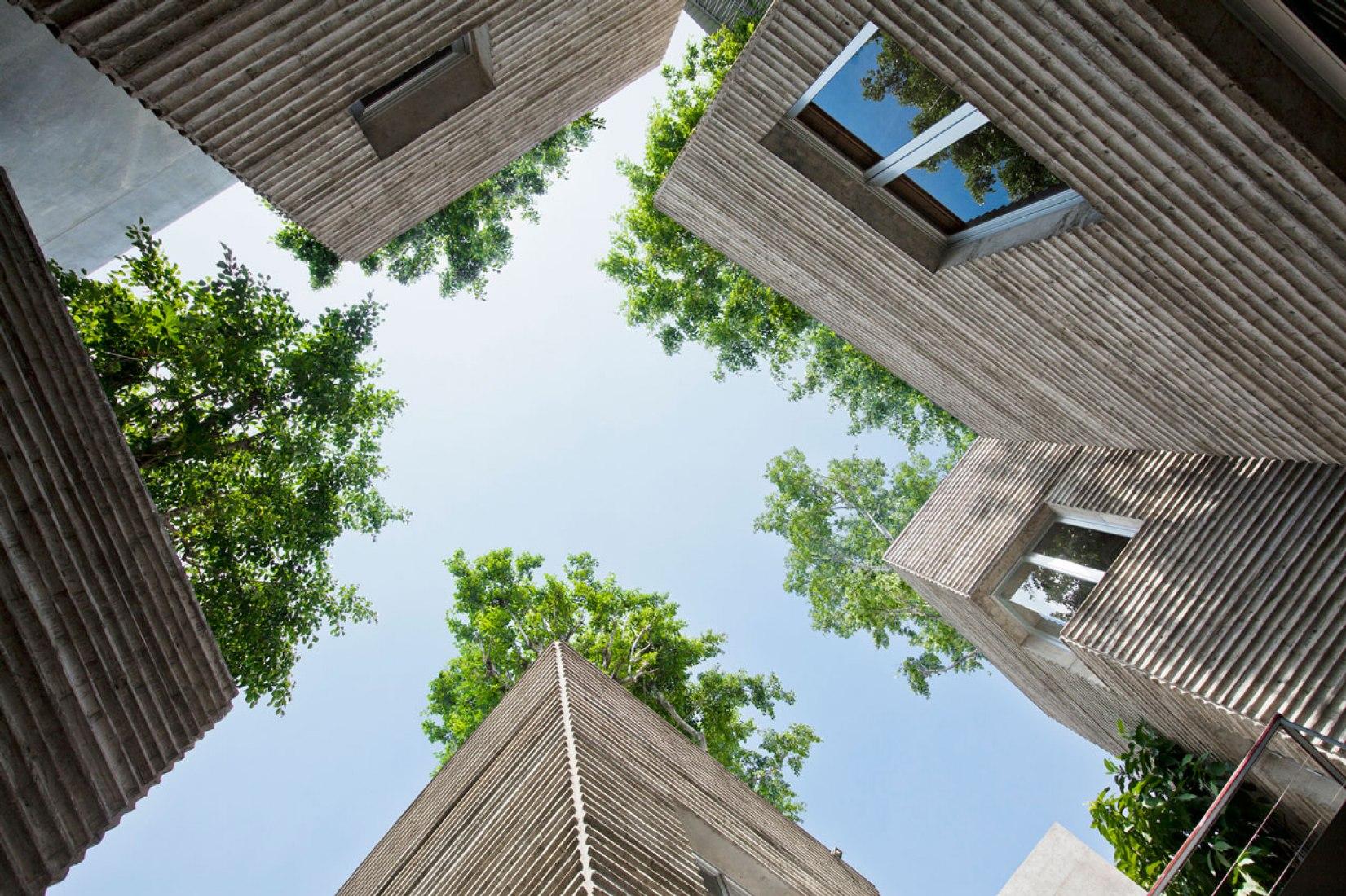 Vista desde abajo hacia los árboles. Casa para los árboles por  Vo Trong Nghia Arquitectos. Fotografía © Hiroyuki Oki.