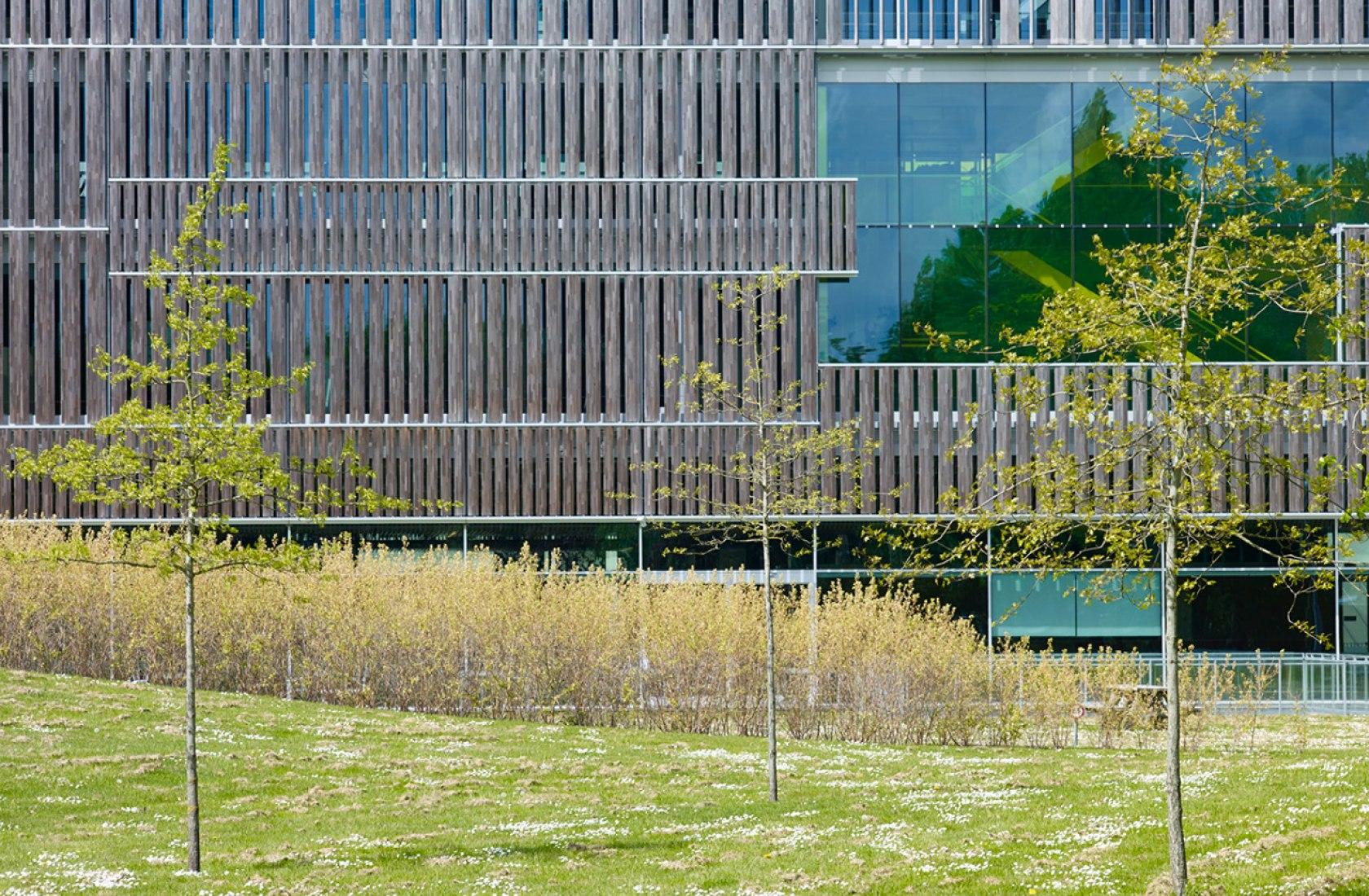 Entorno y paisaje de la sede de PGGM, cuatro años después, por Mateo Arquitectura. Fotografía © Adrià Goula.