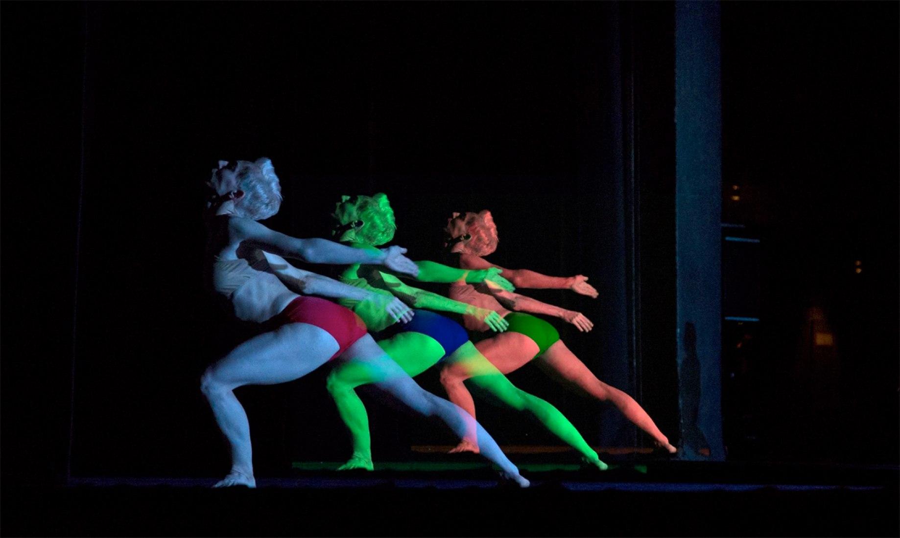 Imagen del espectáculo de danza 'Tree of codes'. Fotografía © Ravi Deepres.