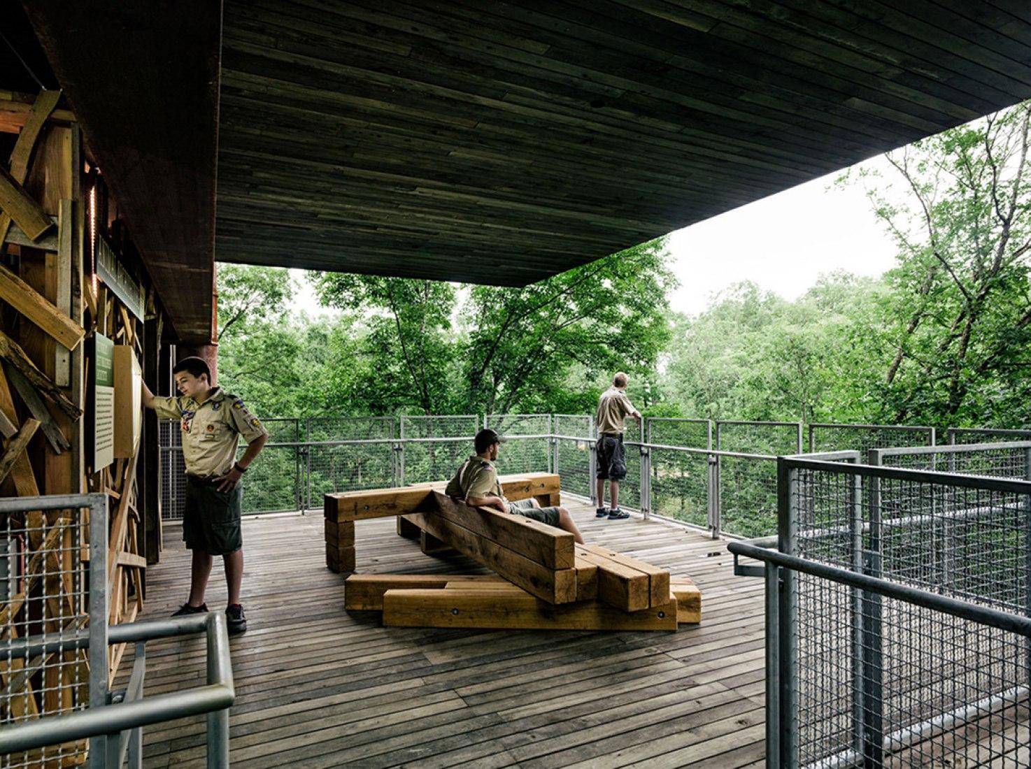 La sostenible casa del árbol por Mithun. Fotografía © Joe Fletcher