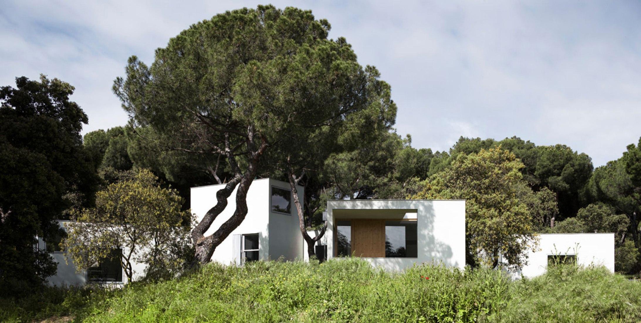 Casa MO por FRPO Rodriguez & Oriol ARCHITECTURE LANDSCAPE. Fotografía © Miguel de Guzmán.