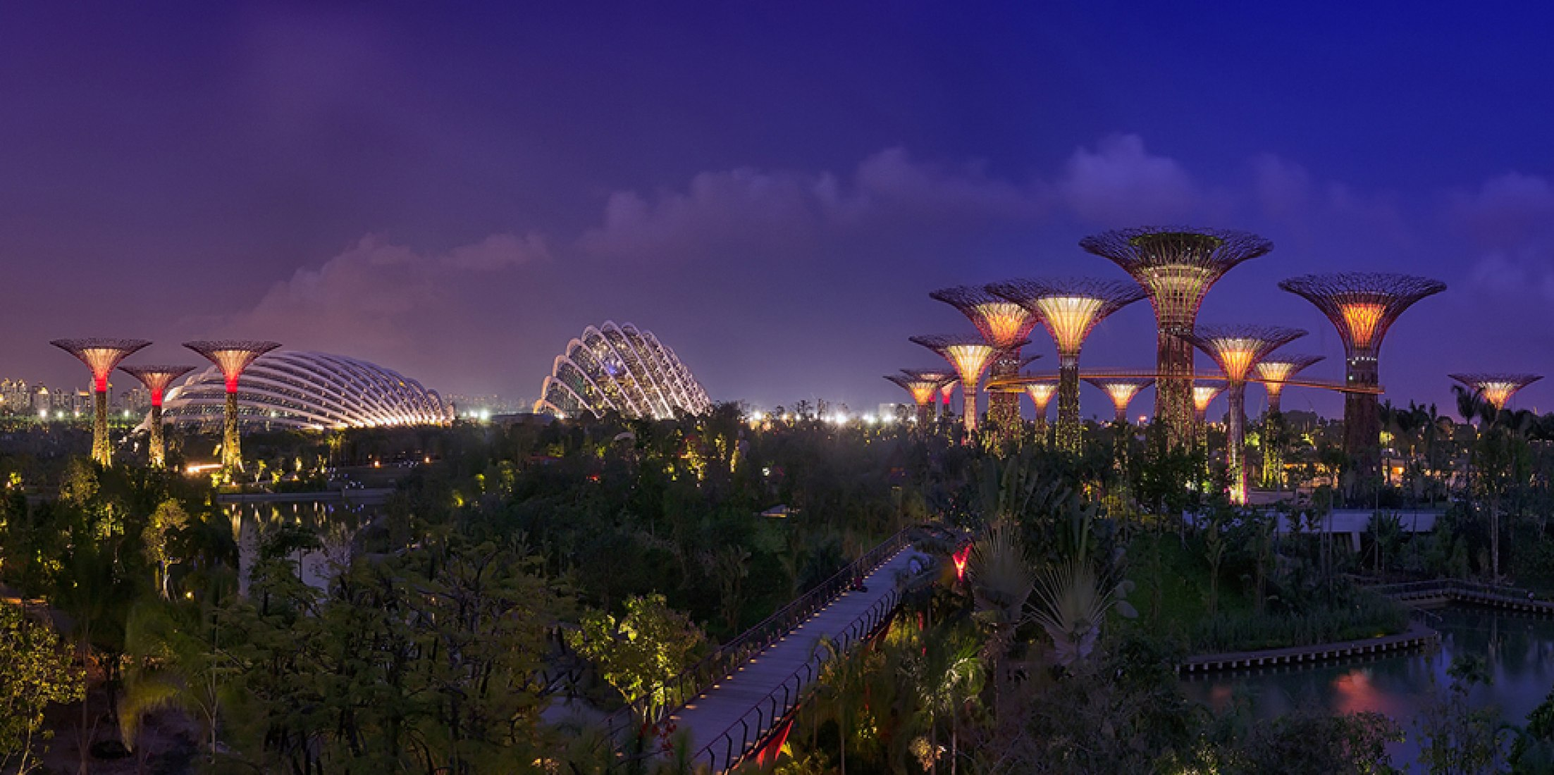 Gardens by the Bay night view by Grant Associates. Photography © Darren Chin.