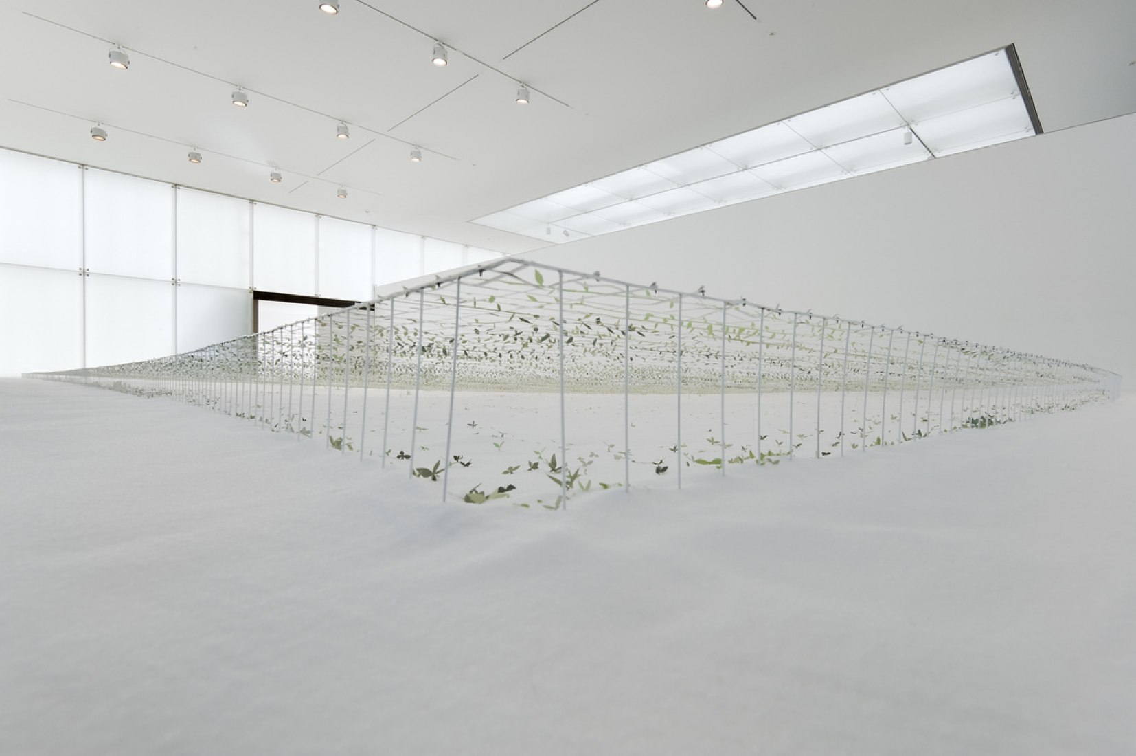 Junya Ishigami, Another scale of architecture - horizon, Toyota Municipal Museum of Art, 2010., courtesy Gallery Koyanagi © junya.ishigami+associates, photograph Yasushi Ichikawa.
