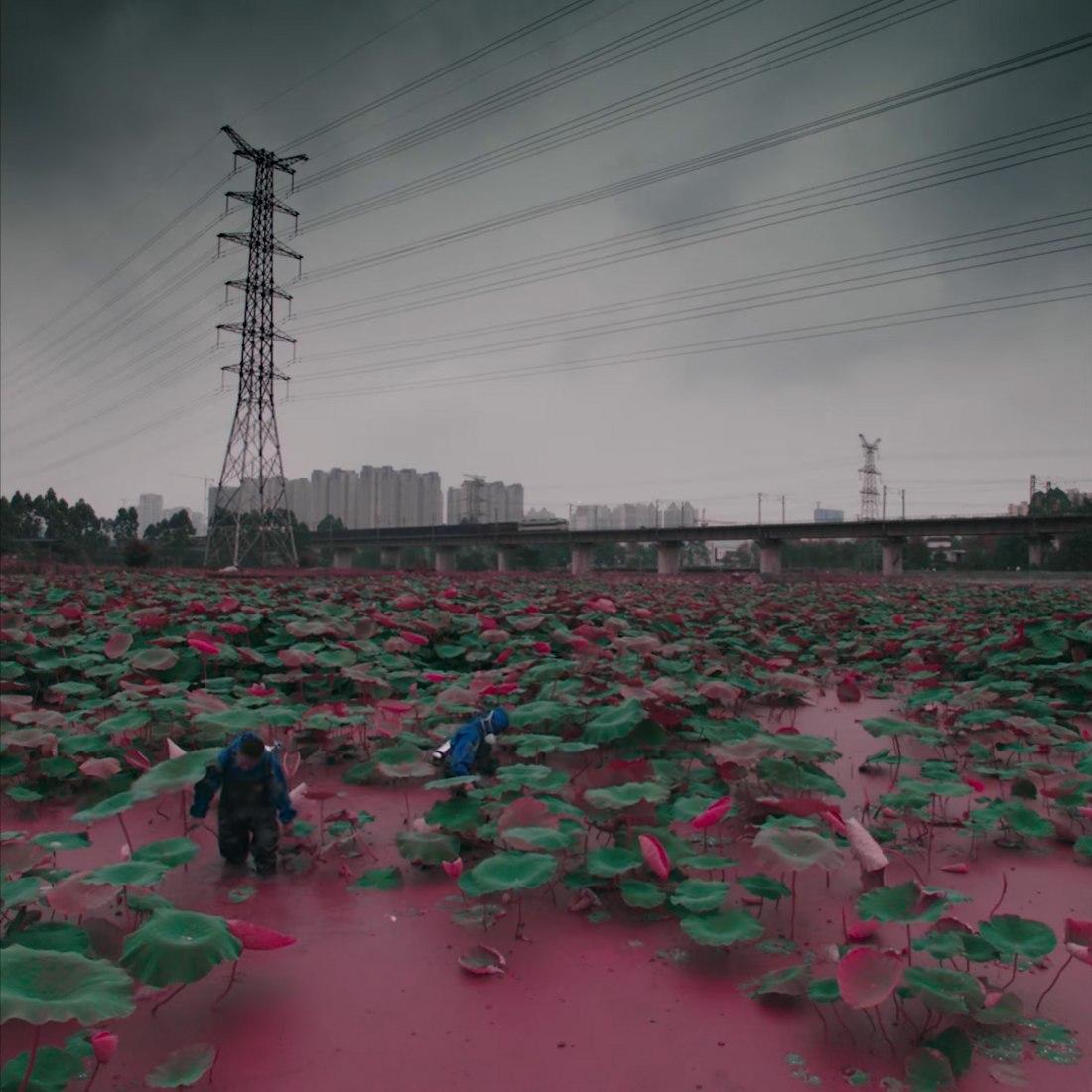 Plastic Heaven by Akini Jing
