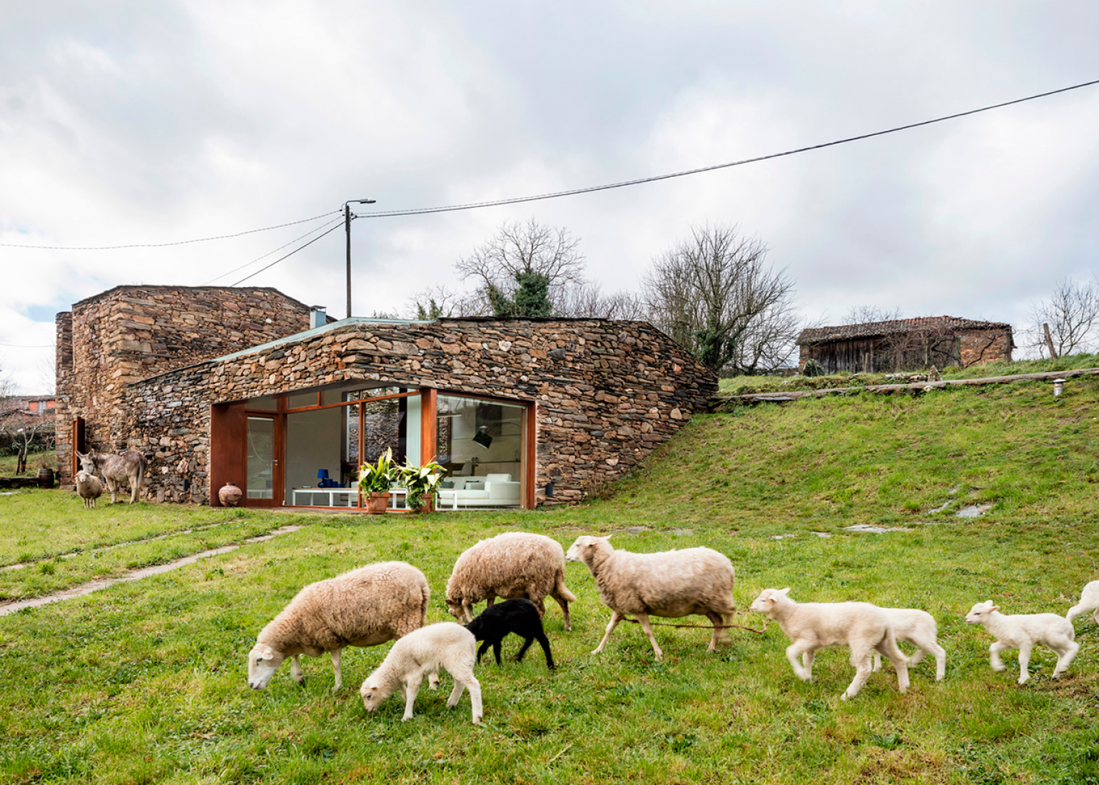 A'Bodega (old winery vs home) by Cubus Arquitectura. Photography © Adrià Goula.