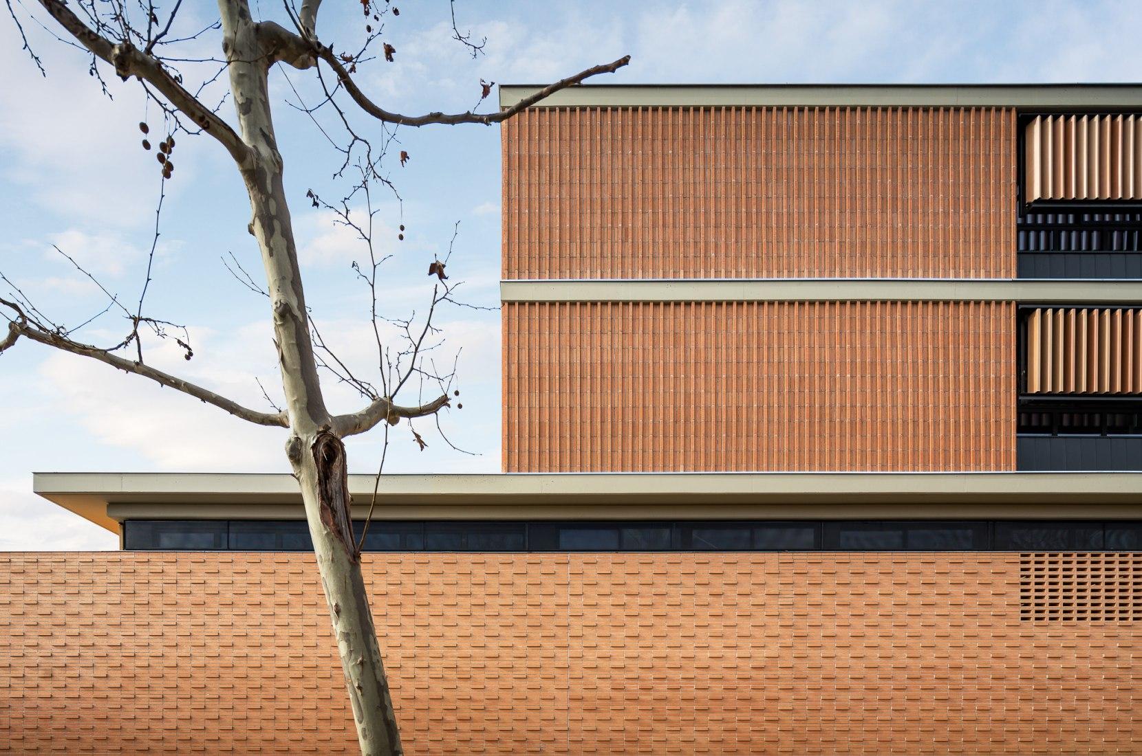 Les Aimerigues Institute by Barceló Balanzó Arquitectes + Xavier Gracia. Photograph by Simón García