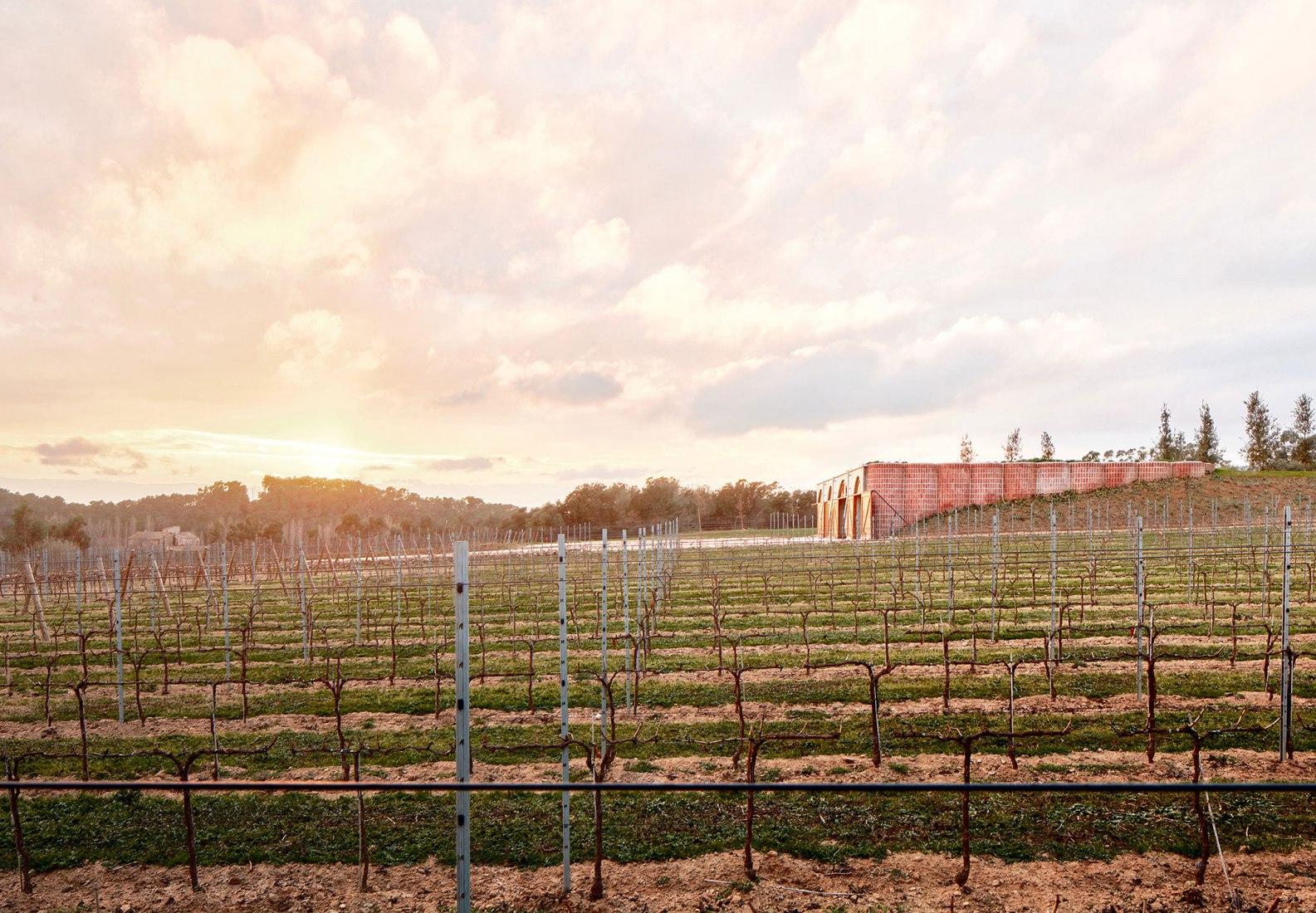 Mont-Ras Winery by Jorge Vidal and Víctor Rahola. Photograph © José Hevia