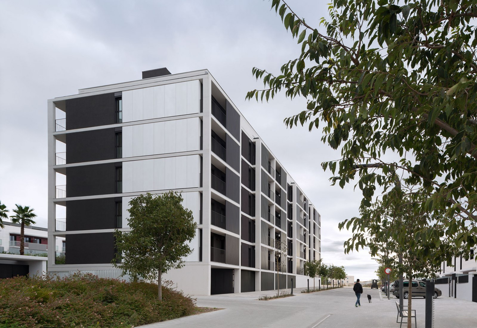 Tasman Housing by BXD Arquitectura. Photograph by Aleix Bagué