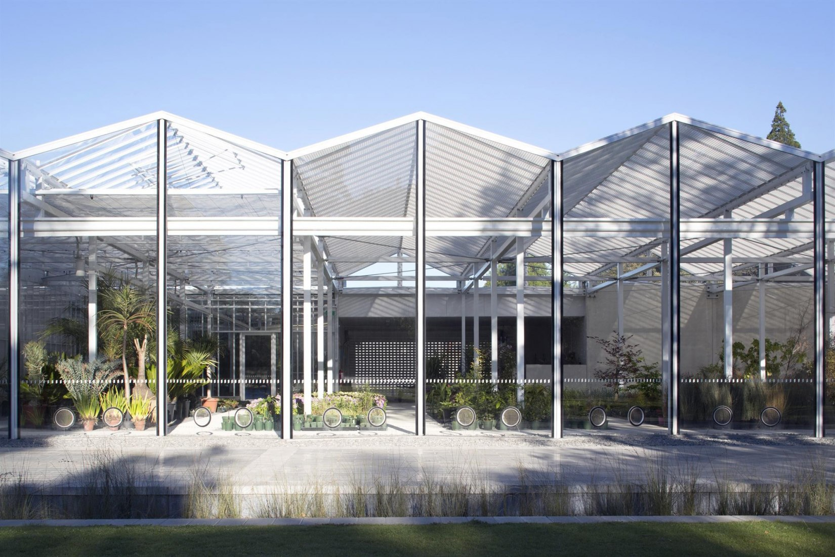 Christchurch Botanic Gardens Visitor's Centre by architects Patterson Associates. Photograph © Simon Devitt, Jeremy Toth