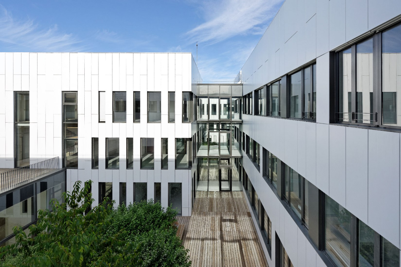 Entre yardas. Instituto de Neurociencia por Dietmar Feichtinger Architectes
