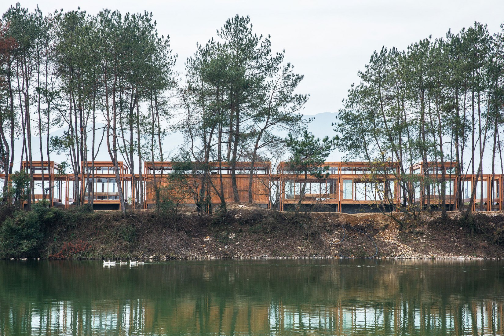 Pine Pavilion by DnA_ Design and Architecture. Photograph by Wang Ziling