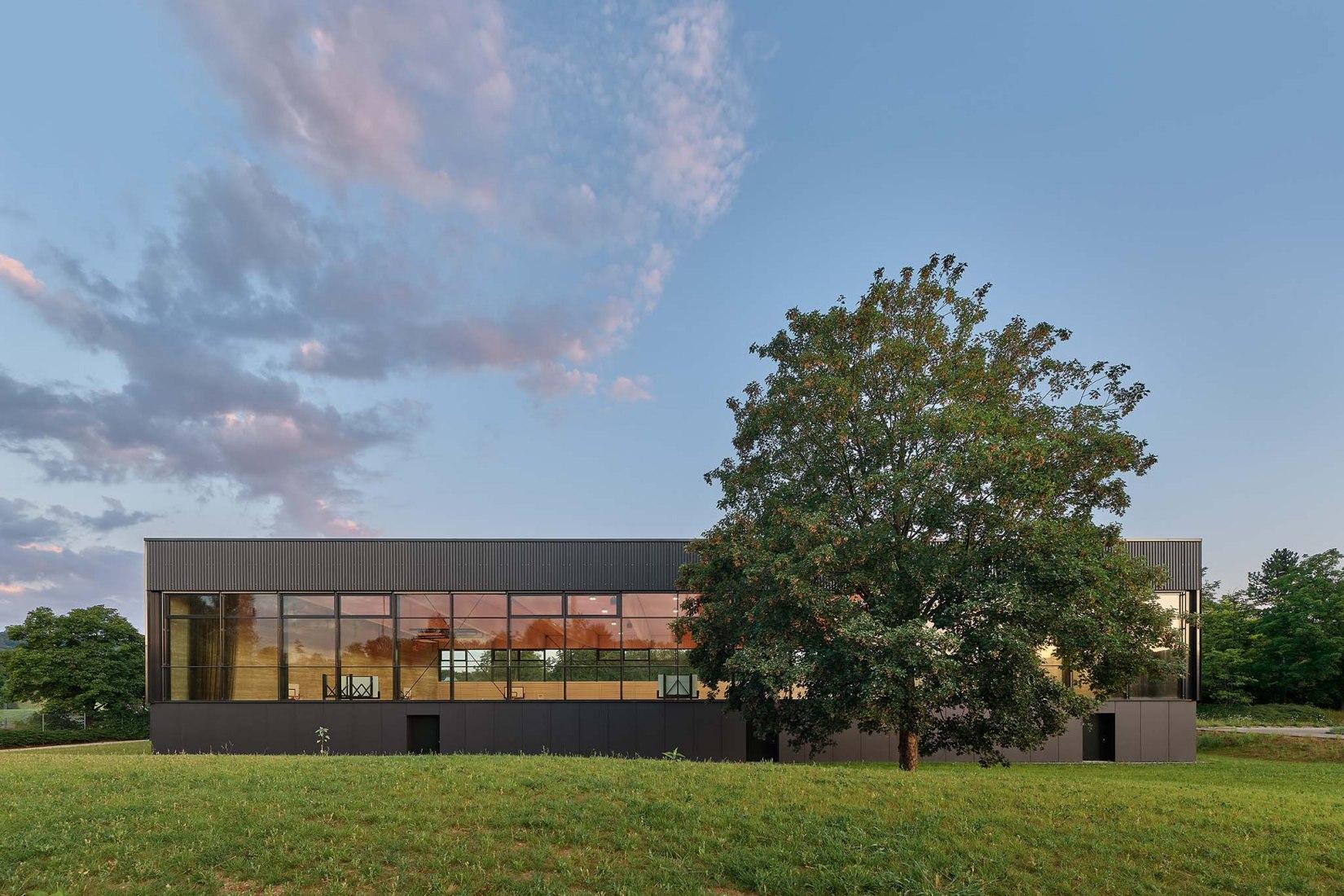 Triple-field sports hall by DREI ARCHITEKTEN. Photograph by Zooey Braun