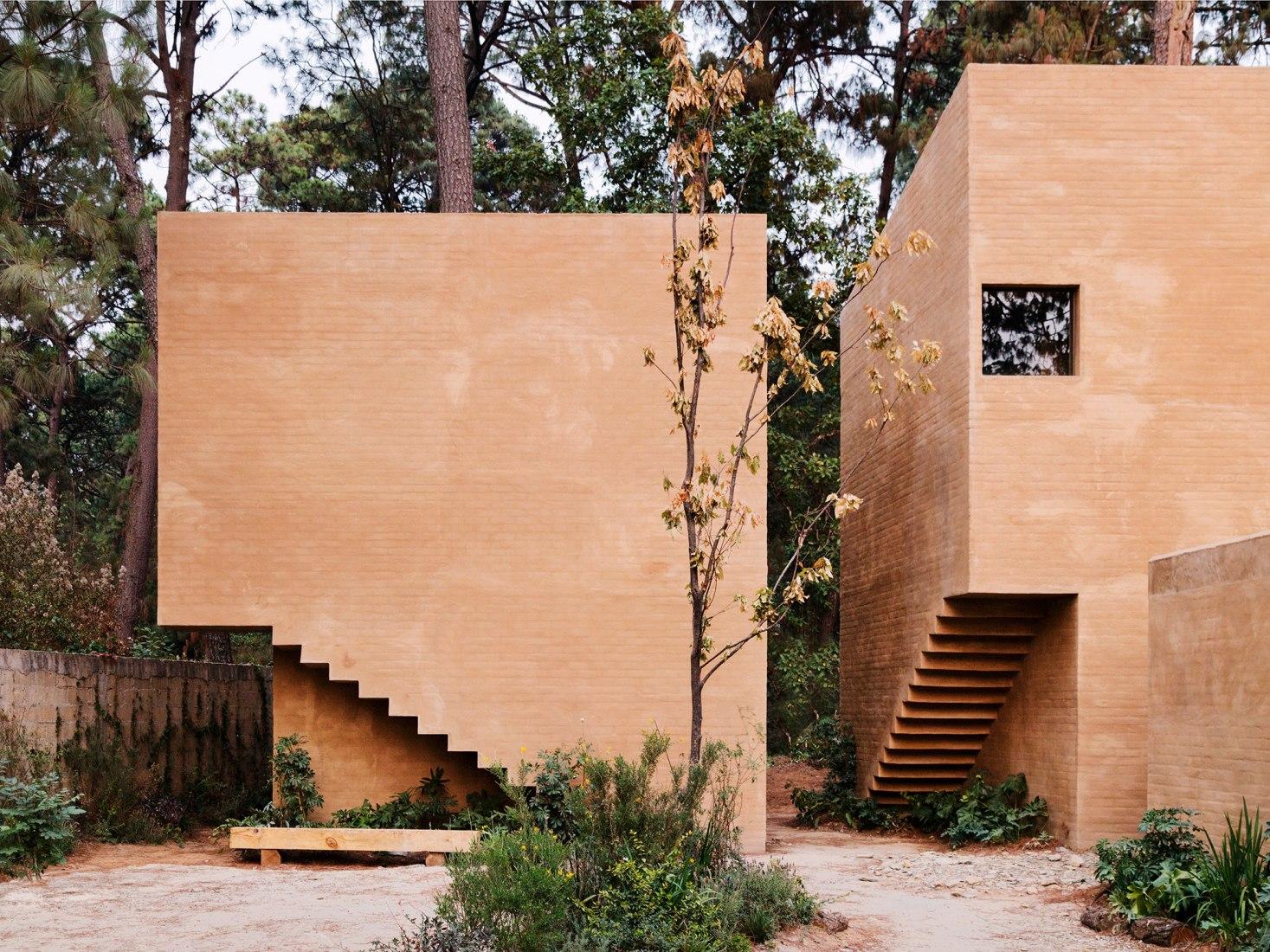 Vista exterior. Entre pinos por Taller Héctor Barroso. Fotografía por Rory Gardiner