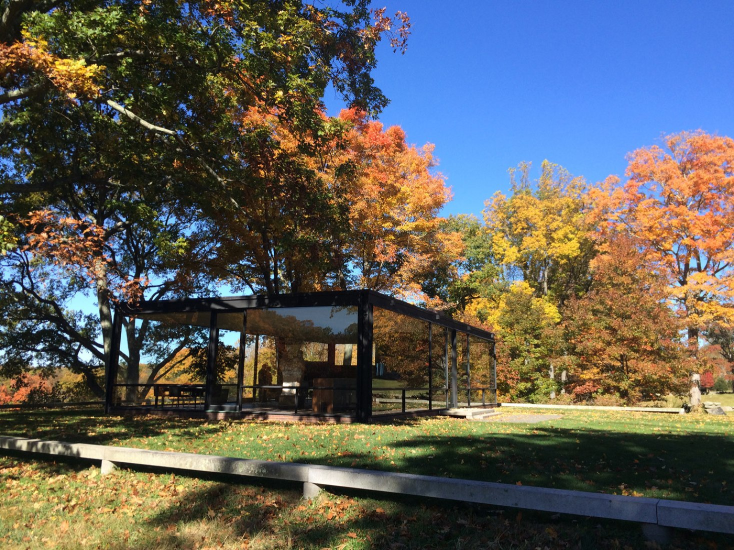Philip Johnson Glass House desmaterialization of the wall: the glass house | the
