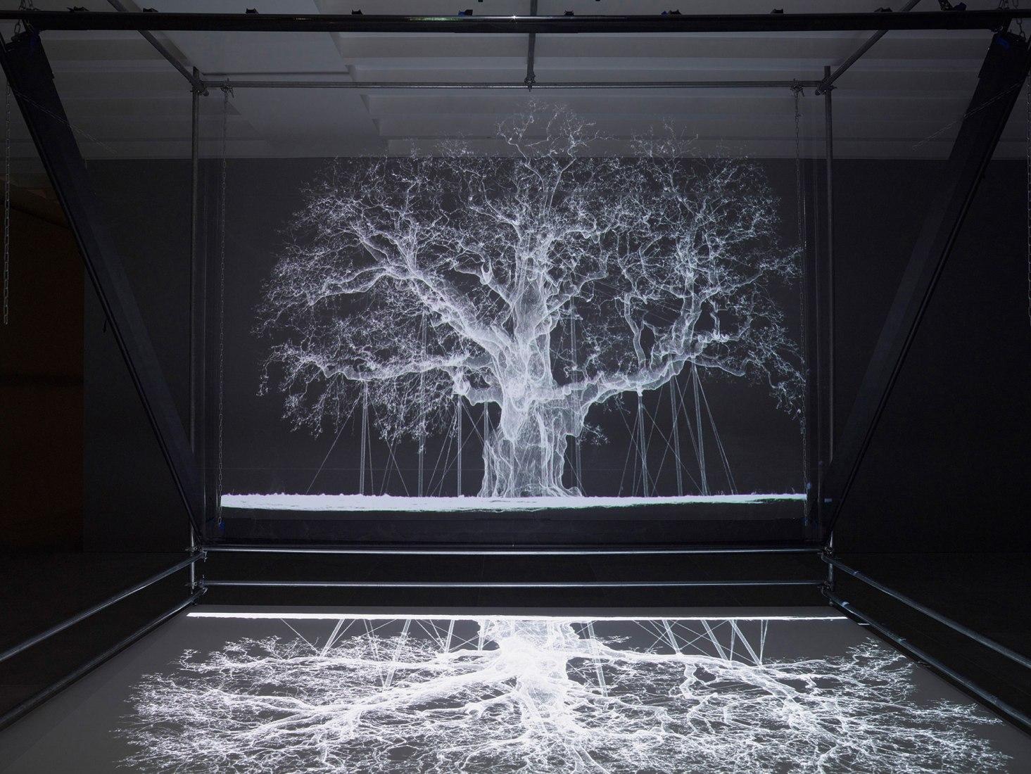 Albion por Mat Collishaw, 2017. Proyector, reproductor, andamio, film transparente espejado, madera, espejo, 427 x 518 x 425 cm. Imagen cortesía del artista y Blain Southern.