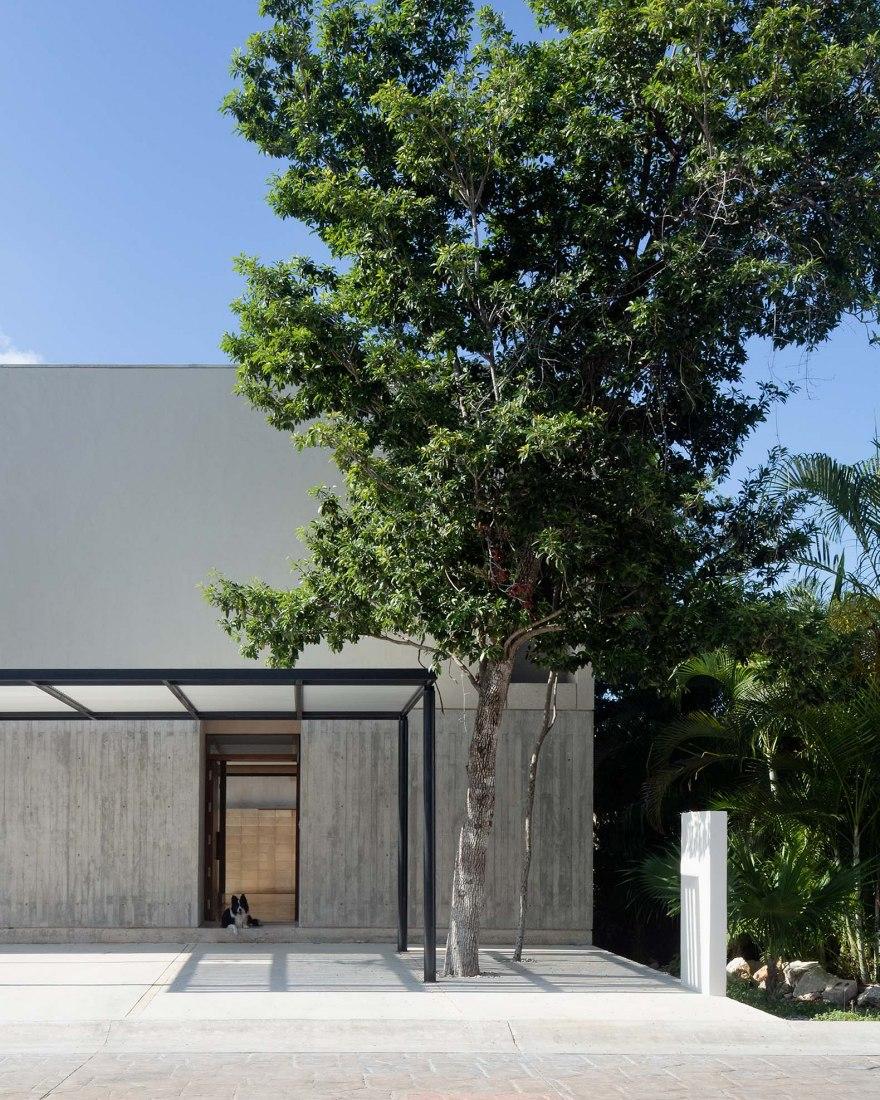 Risch House by Kiltro Polaris Arquitectura. Photograph by Santiago Heyser