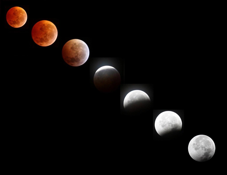 Lunar eclipse sequence taken 3:30AM - 5:06AM (Eastern Standard Time), Dec 21, 2010 in Jacksonville, Florida