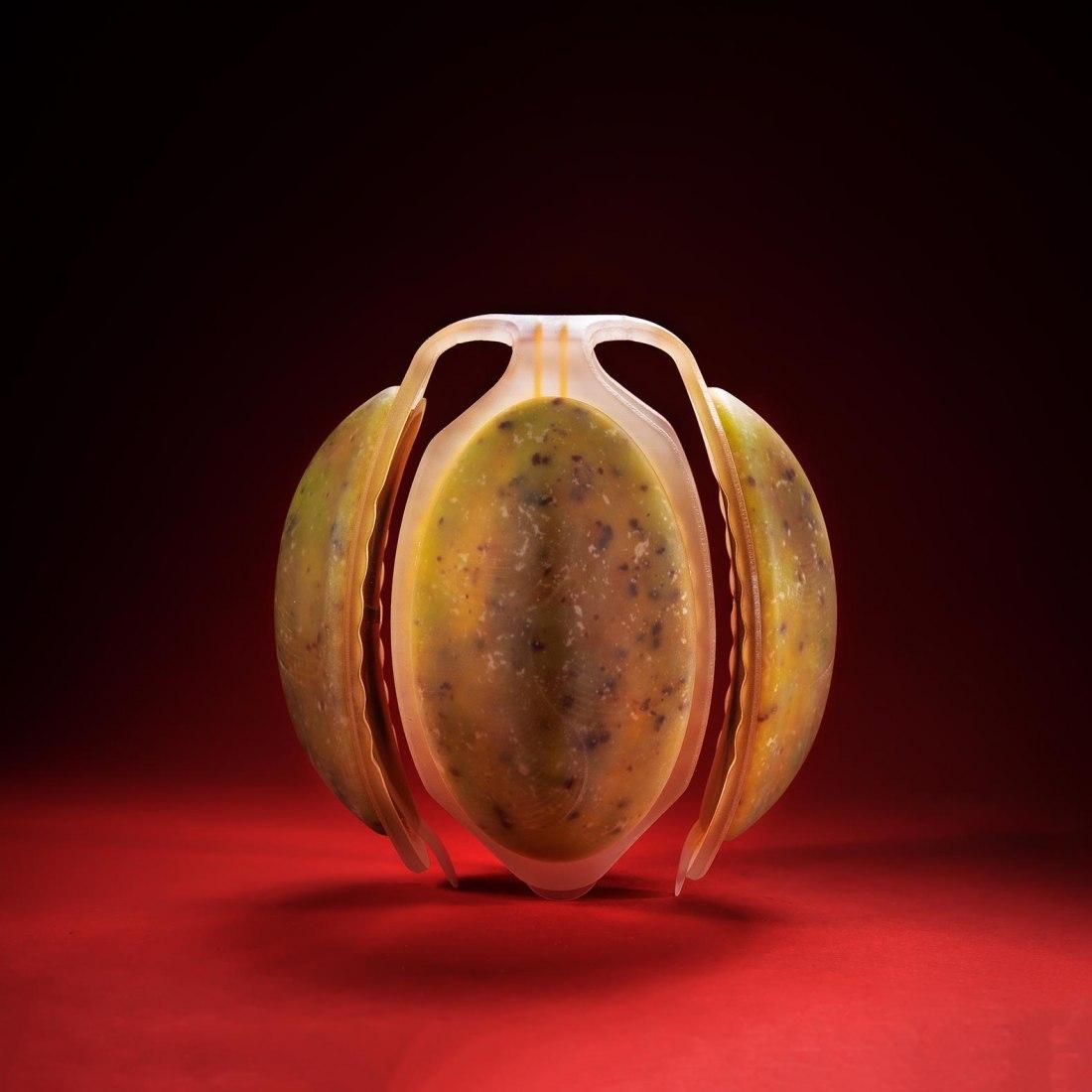 Neo Fruit by Meydan Levy. Photograph by Bogdan Sokol & Shay Maman