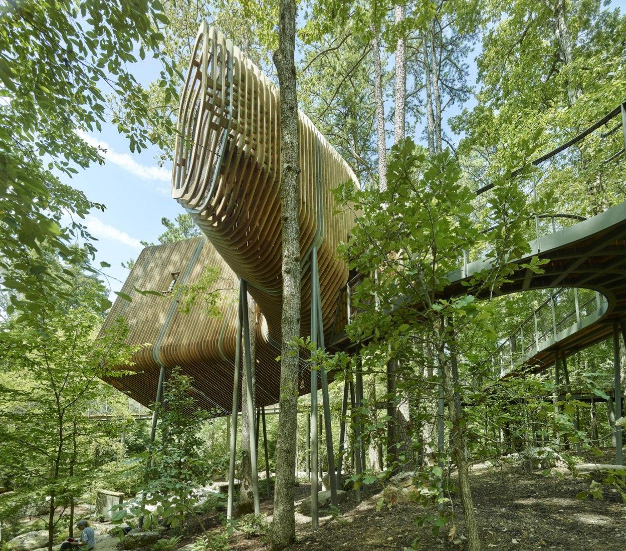 La Casa del Árbol Evans en el Bosque de los Jardines de Garvan por modus studio y la Universidad de Arkansas. Fotografía por Timothy Hursley.