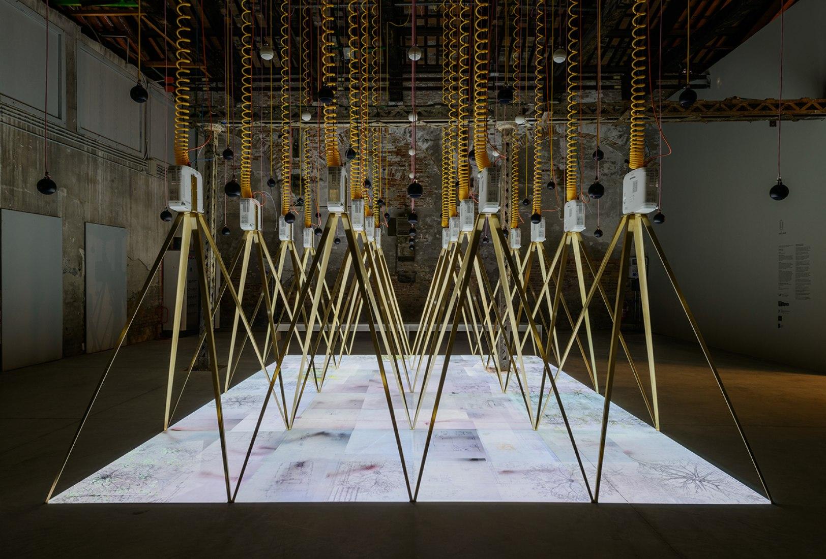 Pabellón de Irlanda en la 15ª Exposición de Arqutectura de la Bienal de Venecia. Imagen cortesía de la Bienal de Venecia. Fotografía © Andrea Avezzù.