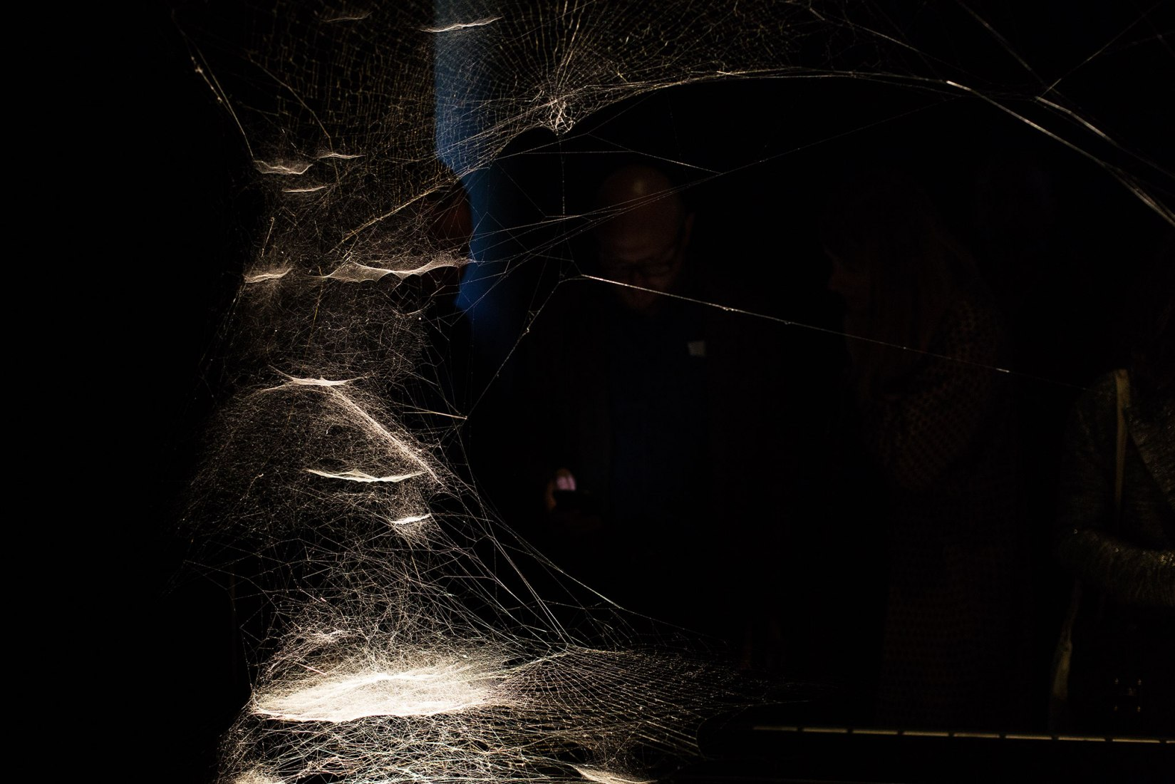 Spider/Web Pavilion 7: Oracle Readings, Weaving Arachnomancy, Synanthropic Futures: At-ten(t)sion to invertebrate rights!, 2019, by Tomás Saraceno. Photograph by Francesco Galli. Courtesy of La Biennale di Venezia.