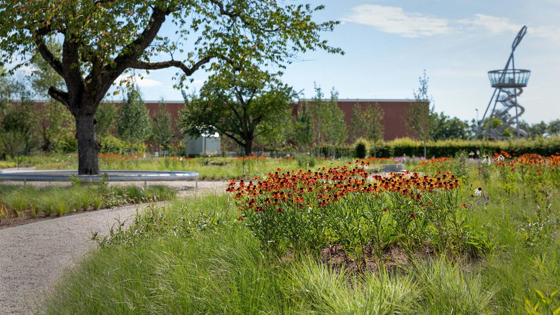 Oudolf Garten diseñado en el Vitra Campus por Piet Oudolf.