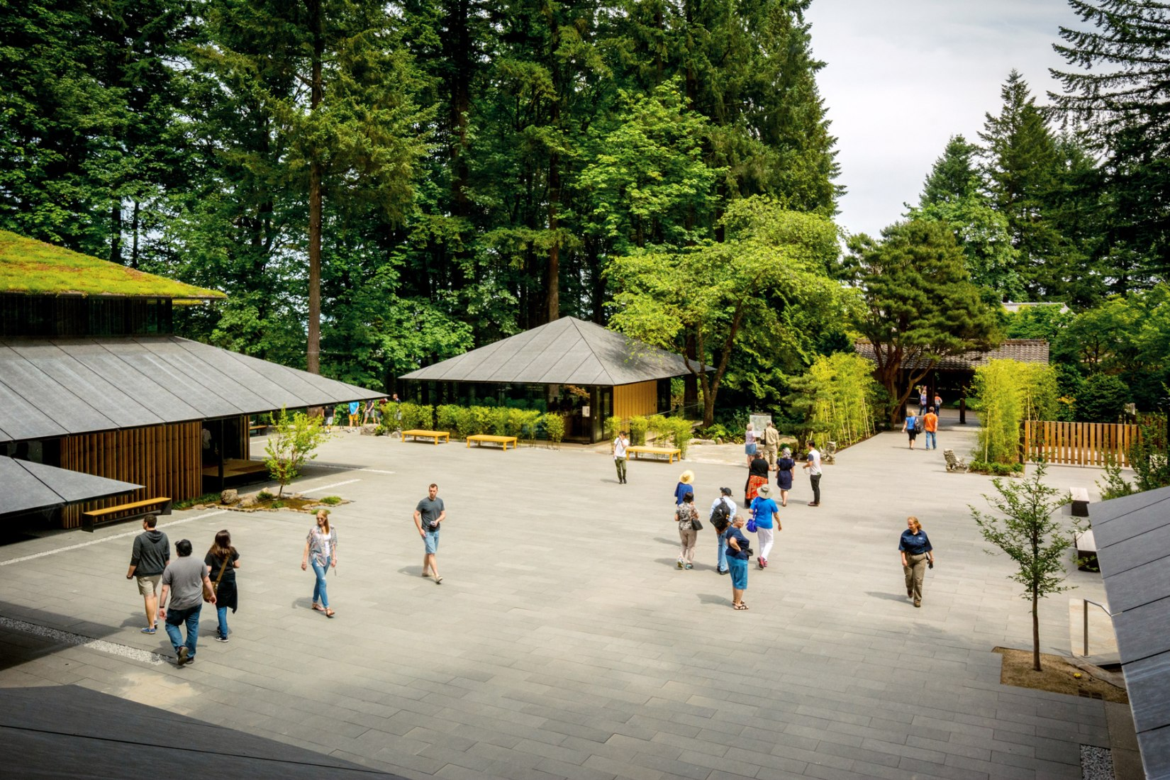 Portland Japanese Garden Expansion by Kengo Kuma. Photograph by Bruce Foster