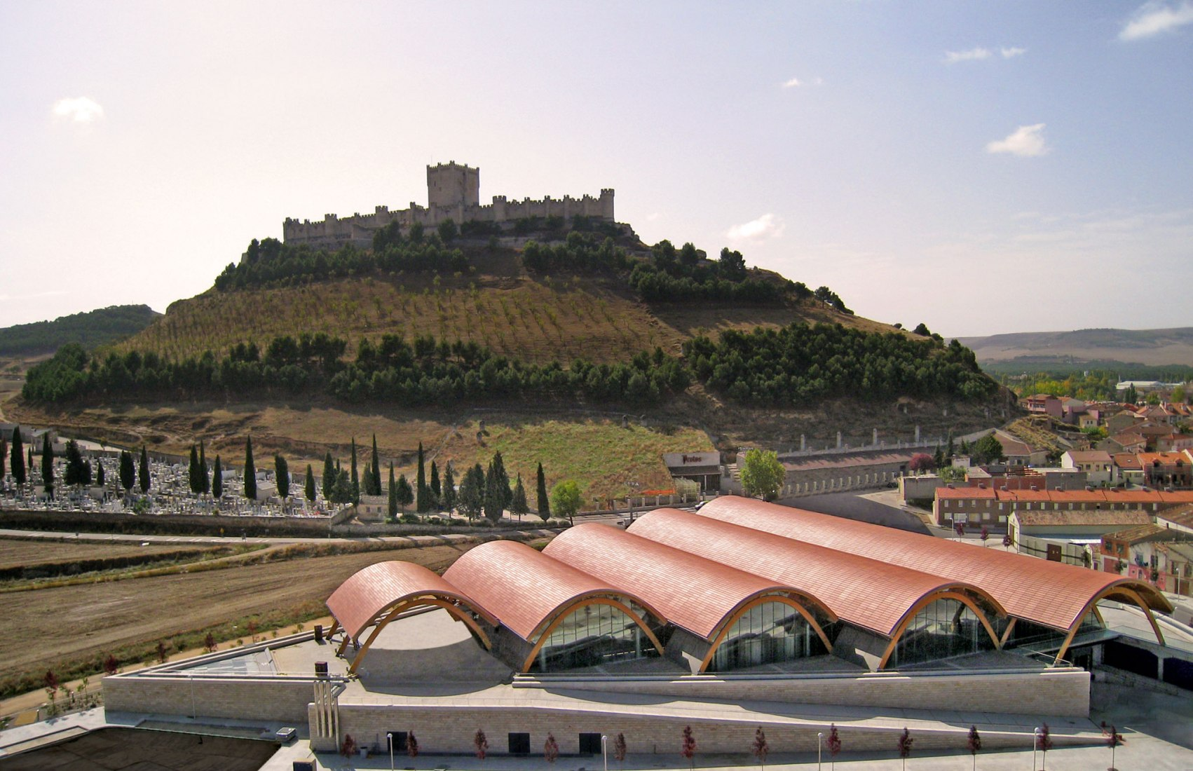 Aerial view - looking towards the castle. Photograph Bodegas Protos. Copyright holder Bodegas Protos
