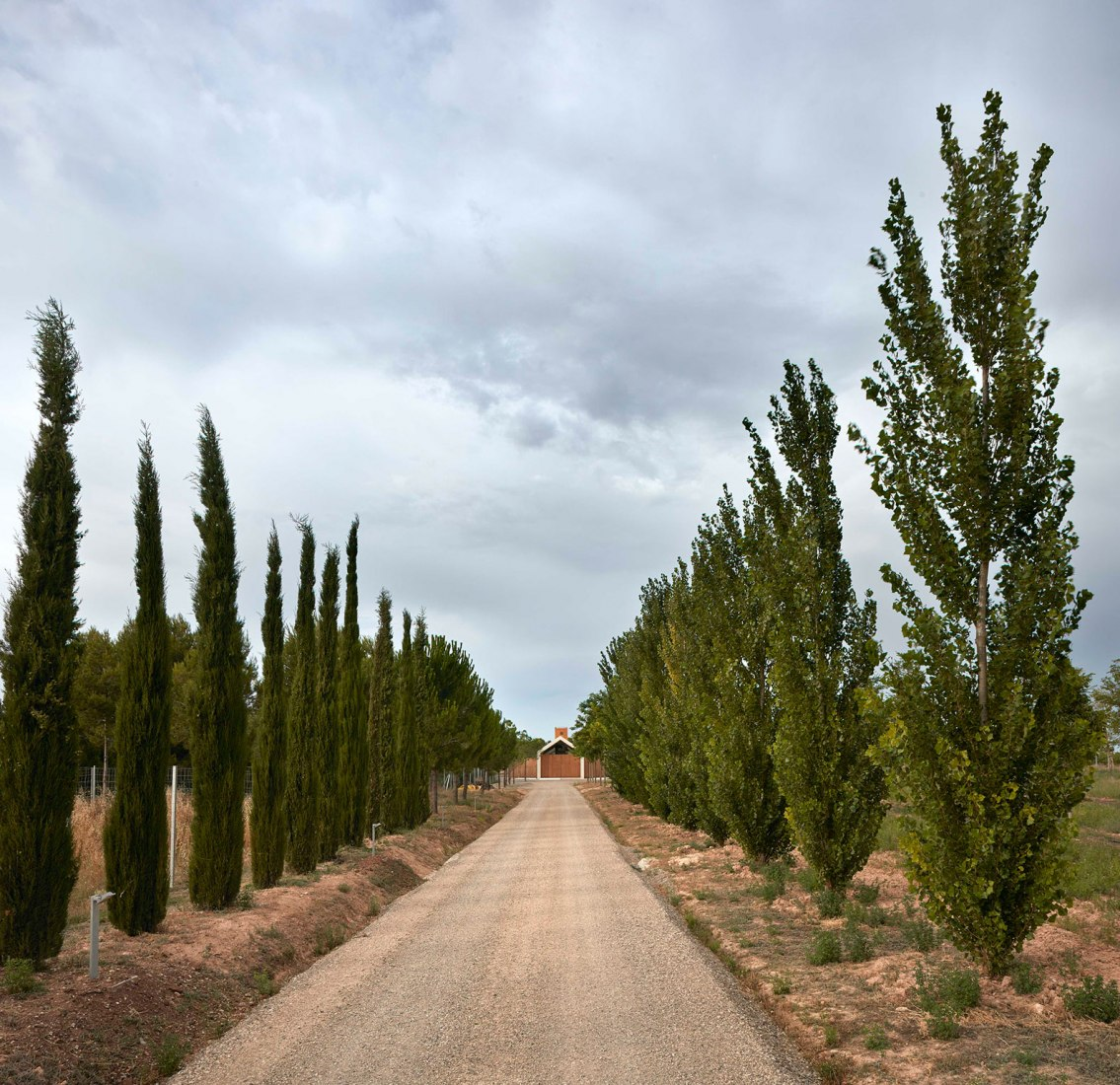 Refugio en la viña por Ramón Esteve Estudio. Fotografía © Mariela Apollonio