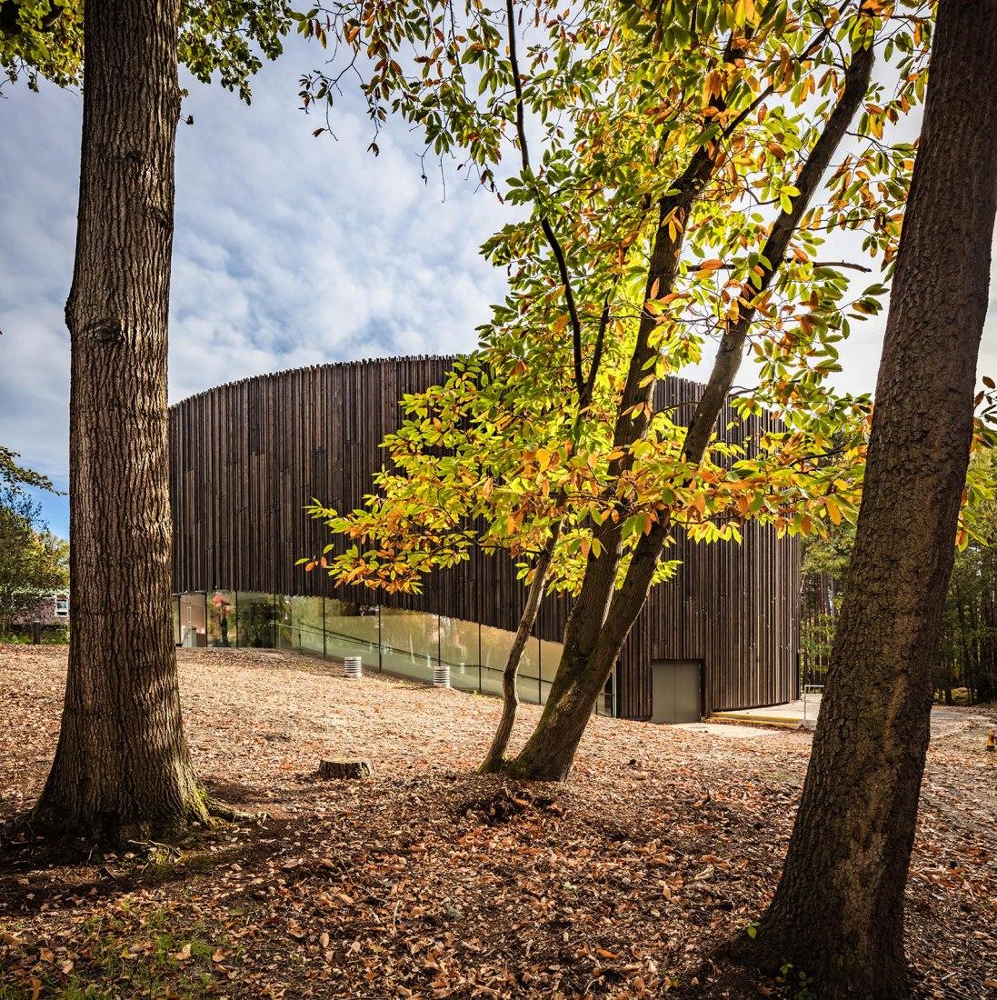 Centro de Artes Escénicas en Wellington College por Studio Seilern Architects. Fotografía por Kanipak Photograpyts Centre at Wellington College by Studio Seilern Architects. Photograph by Kanipak Photograpy