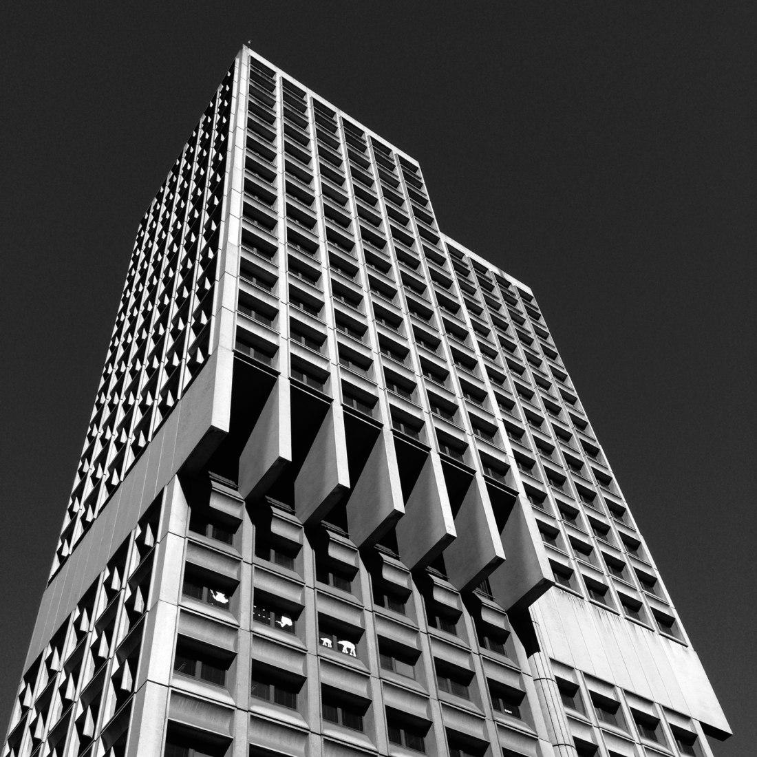 Ayuntamiento de Sydney. Brutalist Sydney por Blue Crow Media. Fotografía © Glenn Harper