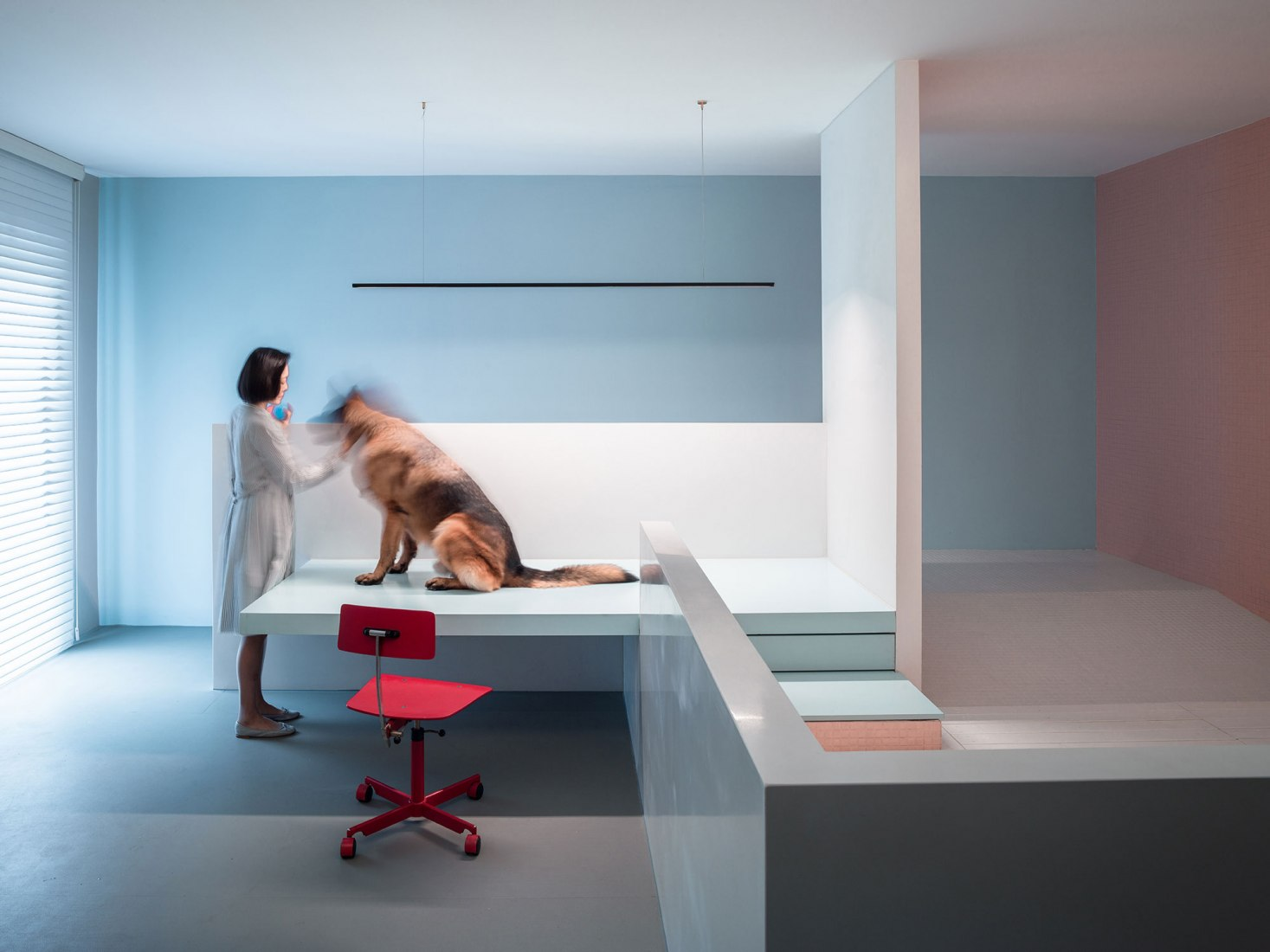 Interior view. The dog house, new project by Atelier About Architecture. Photograph by Sun Haiting