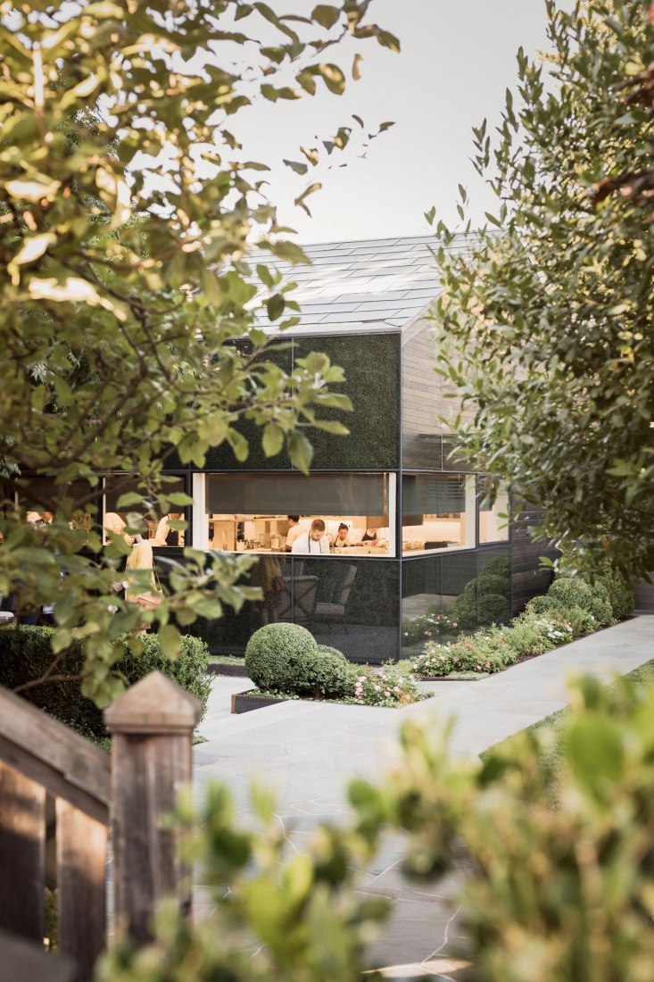 A sequence of garden spaces lead visitors into the complex and through to the dining area. Photograph by Michael Grimm