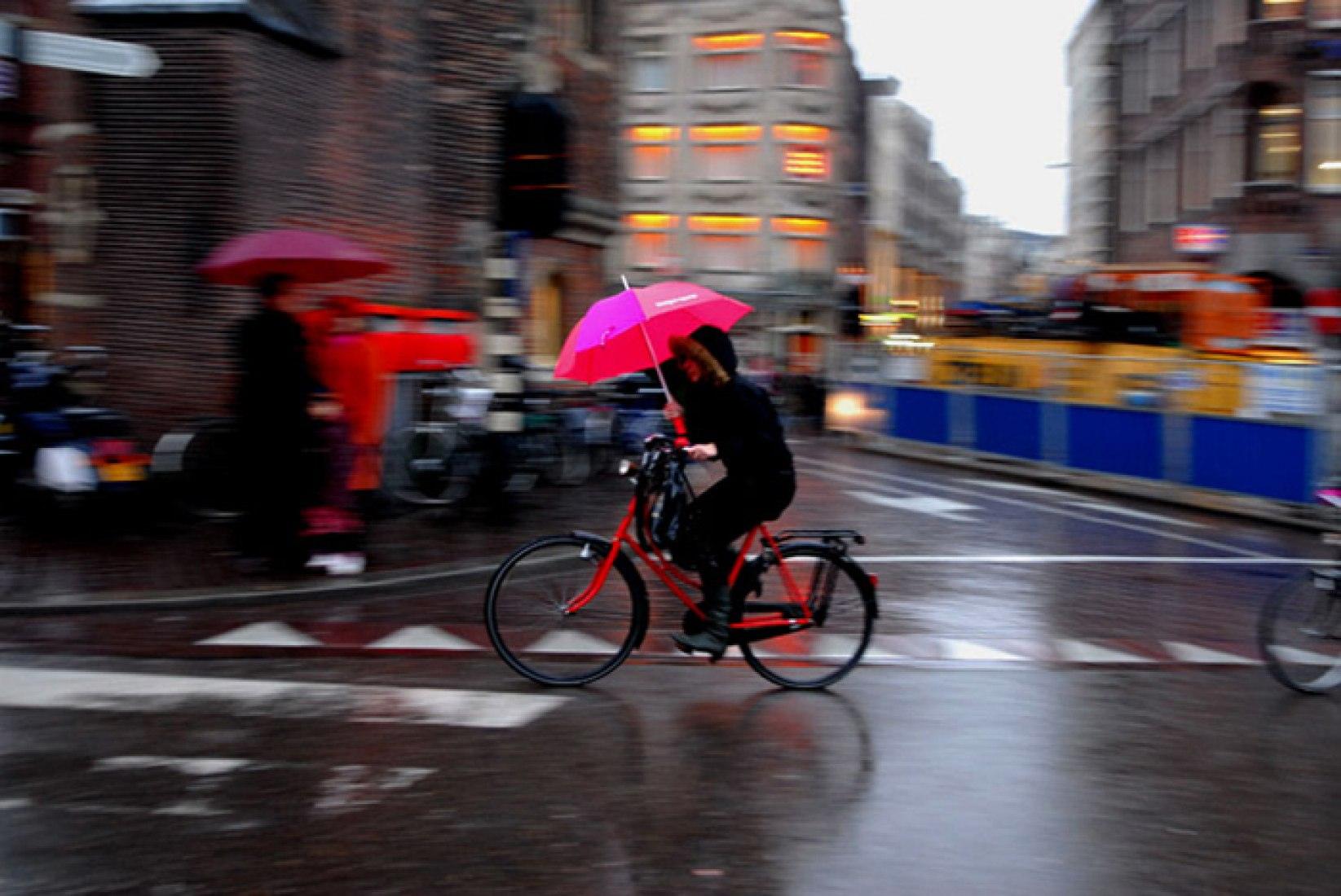 Under the rain. Photography © Francisco Peláez Marín